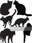 Design,Animal,Black Color,U...