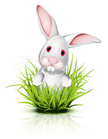 Rabbit - Animal,Cute,Avatar...