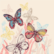 Butterfly - Insect,Drawing ...