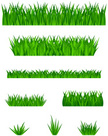 Grass,Set,Icon Set,Isolated...