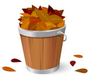 Bucket,Leaf,Autumn,Inside O...
