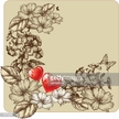 Old-fashioned,Flower,Rose -...