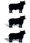 Bull - Animal,Silhouette,Sy...