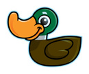 Duck,Cartoon,Isolated On Wh...