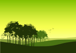 Tree,Forest,Landscape,Silho...