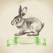 Rabbit - Animal,Retro Revival,Old-fashioned,Easter,Ilustration,Greeting Card,Silhouette,Backgrounds,Springtime,Cultures,Drawing - Art Product,Vector,Nature,Season,Gift,Symbol,Celebration,Painted Image,Design,Decoration,Banner,Holiday