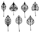 Aspen Leaf,Black And White,White Background,Ilustration,Squiggle,Leaf,Line Art,Pattern,Vector,Simplicity,Computer Graphic,Summer,Growth,Plant,Swirl,Ornate,Abstract,Backgrounds,Outline,Design Element,Group of Objects,Duotone,Botany,White,No People,Beauty In Nature,foliagé,Season,Decoration,Silhouette,Shape,Springtime,Set,Collection,Icon Set,Isolated,Environment,Small Group of Objects,Outdoors,Isolated On White,Drawing - Art Product,Scroll Shape,Nature,Doodle,Scribble,Clip Art