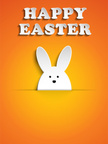 Pets,Easter,Easter Bunny,Fa...