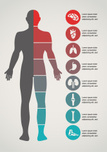 The Human Body,Healthcare A...