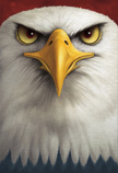 Eagle - Bird,Animal Head,Bi...