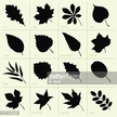 Icon Set,Lime Tree,Beech Tr...