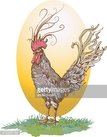 Rooster,Ranch,Egg,Painted I...