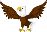 Eagle - Bird,Cartoon,Cute,B...