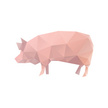 Livestock,Abstract,Pig,Vect...