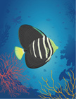 Tropical Fish,Saltwater Fis...