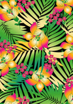Tropical Climate,Pattern,Pr...