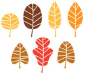 Colorful autumn tree leaves set isolated on white