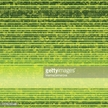 Striped,Backgrounds,Pinstri...