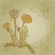 Vector,Flower,Backgrounds,W...