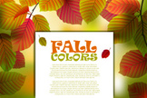 Vector,Leaf,Autumn,autumn l...