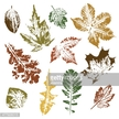 Track,Orange,Computer Graphics,Symbol,Rusty,Nature,Botany,Textured Effect,Paintings,Plant,Painting,Shape,Brown,Green Color,Orange Color,Red,Yellow,Circle,Pattern,Dirty,Tree,Uncultivated,Leaf,Season,Leaf Vein,Autumn,Chestnut Tree,Maple Tree,Oak Tree,Silhouette,Woodland,Forest,Computer Graphic,Dandelion,Poplar Tree,Track - Imprint,Paintbrush,Outline,Abstract,Chalk Drawing,Illustration,Sketch,Plantain,Floral Pattern,No People,Vector,Collection,Oak Woodland,Grunge