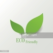 Two green leaves on white background with Eco Friendly text