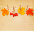Autumn,Backgrounds,Beauty I...