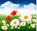 Field,Clip Art,Flower,Color...