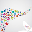 Multi Colored,Flying,Vector