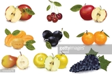 Fruit,Illustration,No Peopl...