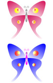 Insect,Animal,Butterfly - I...