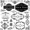 Gothic Style,Black Color,Victorian Style,Cut Out,Label,Vector,Message,Simplicity,Old-fashioned,Wedding,Scroll,Invitation,Decoration,Luxury,Floral Pattern,Cartouche,Pattern,Retro Style,Calligraphy,Swirl Pattern,Dingbat,Rococo Style,Typescript,Illustration,Design,Baroque Style,Ornate,Picture Frame,White Color,Greeting Card,No People,Letter - Document,Art Nouveau,Elegance,Silk,Copy Space,Frame - Border