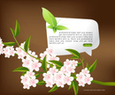 Flower Head,Leaf,home page,...