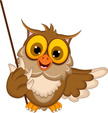 Owl,Wisdom,Animal,Fun,Humor...
