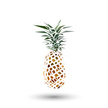 Pineapple,polygonal,Isolate...