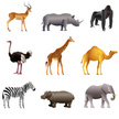 African animals vector set