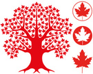 Maple Tree,Maple Leaf,Leaf,...
