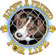 Friendship,adopt,Heading th...