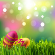 Easter Egg,Grass,Yellow,Pin...