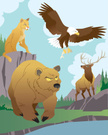 Mountain Lion,Bald Eagle,Be...