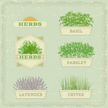 Potted Plant,Herbal Medicin...