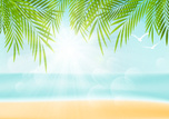 Palm Tree,Tropical Climate,Vacations,Travel,Sand,Vector,Beach,Idyllic,Backgrounds,Bird,Tourist Resort,Sun,Sunny,Sky,Leaf,Blue,Water,Tourism,Landscape,Nature,Tree,Summer,Sea,Sunlight