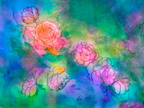 Paintings,Rose - Flower,Pai...