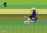 Agriculture,Horizontal,Adul...