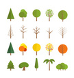 Pine,Branch,Vector,Forest,N...