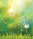 Summer,Dandelion,Sun,Landscape,Sunlight,Backgrounds,Scenics,Sunny,Vector,Nature,Flower,Beauty In Nature,Concepts,Ilustration,Inspiration,Springtime,Lawn,Leaf,Single Object,Defocused,Ideas,Shiny,Grass,Light - Natural Phenomenon,Weed,Flying,Field,Green Color