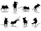 Mouse,Silhouette,Rodent,Ani...