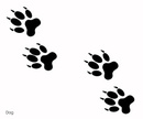 Animal,Paw,Outline,Vector,F...