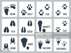 Track,Symbol,Sign,Footprint,Nature,Animal Wildlife,Hunting,Animal,Animal Body Part,Mammal,Shape,Elk,Deer,Moose,Dog,Bear,Domestic Cat,Wolf,Fox,Hare,Rabbit - Animal,Squirrel,Silhouette,Raccoon,Claw,Computer Icon,Wild Boar,Animal Foot,Paw,Track - Imprint,Cut Out,Illustration,Vector,Pets,Collection,Icon Set