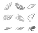 Artificial Wing,Wing,Angel,...